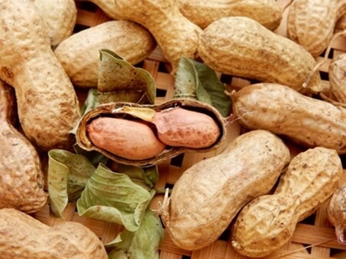 ピーナッツの血管強化&花粉症撃退