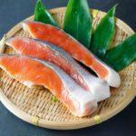 きょうの料理【ゆーママの冷凍お弁当ストックさけのごまみそマヨ焼きのレシピ】松本有美さんが紹介