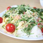 【家事ヤロウ】彩りそうめんの作り方を紹介!プラス・マイナス岩橋さんの奥さんのレシピ