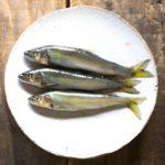 【ZIP!】おうちで料亭の味時短鮎の甘露煮の作り方!ミシュラン2つ星祇園大渡さんのレシピ