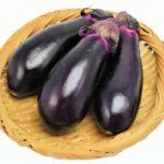 【主治医が見つかる診療所】ナスの冷菜の作り方を紹介!ナス農家秘伝のレシピ