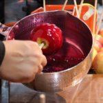 【世界一受けたい授業】サイエンススイーツレシピ!失敗しないフルーツ飴の作り方を紹介!