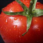【あさイチ】冷凍トマトでインド風トマトいり卵の作り方を紹介!枝元なほみさんのレシピ