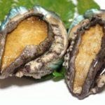 【ごはんジャパン】下田の宿に新提案炙りアワビのカルパッチョの作り方!片岡護さんのレシピ