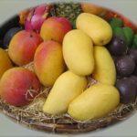 博士ちゃん【りんご・柿など高級フルーツ】フルーツ博士ちゃんが紹介!