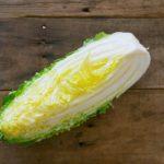 【ジョブチューン】白菜農家レシピ!まるごと白菜ステーキの作り方!