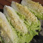 【青空レストラン】白菜ステーキの作り方を紹介!静岡県三島市三ツ谷白菜レシピ