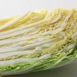 【相葉マナブ】白菜レシピ!よだれ白菜の作り方を紹介!旬の産地ごはん