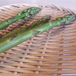 【相葉マナブ】アスパラのいかだ焼きの作り方を紹介!旬の産地ごはんレシピ