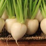 【きょうの料理】春かぶのすり流しの作り方を紹介!松田美智子さんのレシピ