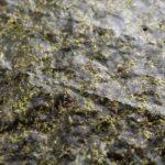 【ヒルナンデス】リュウジさんのレシピ!無限海苔ふりかけの作り方を紹介!