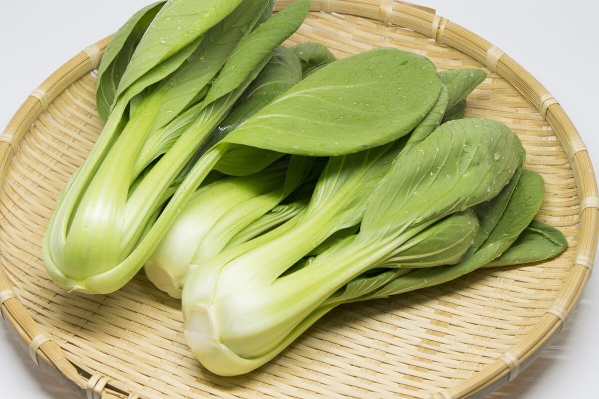 【3分クッキング】チンゲンサイとにんじんの山椒和えの作り方を紹介!小林まさみさんのレシピ