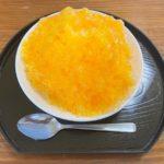 【まる得マガジン】みかんのフローズンヨーグルトの作り方を紹介!稲田多佳子さんのレシピ