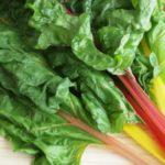 【相葉マナブ】鎌倉野菜レシピ!スイスチャードのペペロンチーノの作り方を紹介!旬の産地ごはん