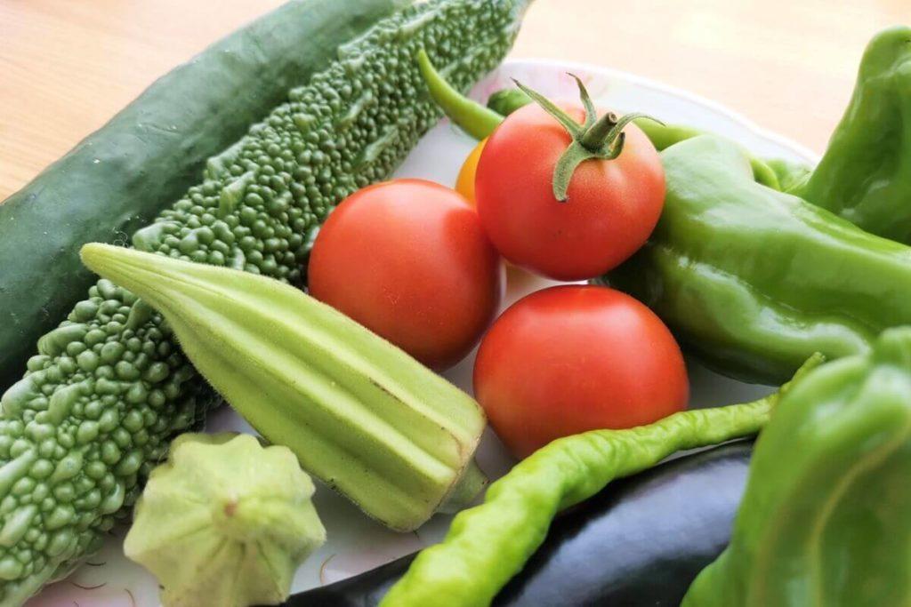 夏野菜の塩水漬け
