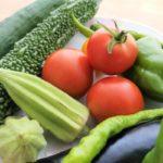 【3分クッキング】夏野菜の塩水漬けの作り方を紹介!小林まさみさんのレシピ