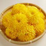 【きょうの料理】菊ごはんの作り方を紹介!江上栄子さんのレシピ