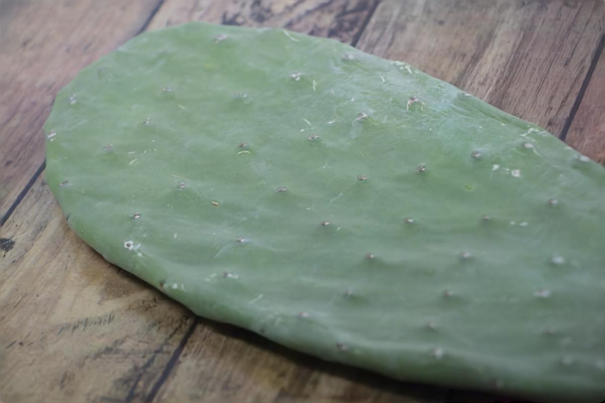 【クックルン】サボテンのかつお節和えの作り方を紹介!サボテンのレシピ
